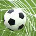Fussball-WM 2011